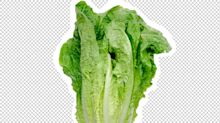 What to Know About the Romaine Lettuce E. Coli Outbreak