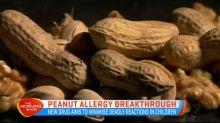 Peanut allergy breakthrough