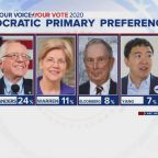 New poll shows Biden, Sanders leading the Democratic 2020 race