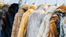 Labour pledges ban on fur imports to the UK