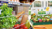 How to score bonus Woolworths Discovery Garden plants