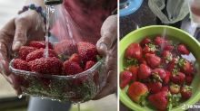'Gross': Eye-opening TikTok video shows how dirty your fruit really is