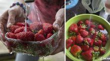 'Nojento': vídeo mostra quão importante é higienizar frutas em casa