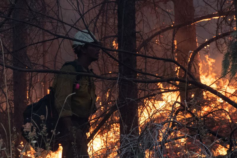 Firefighter from Las Vegas stands on sideline of firing operation near the Obenchain Fire in Butte Falls, Oregon