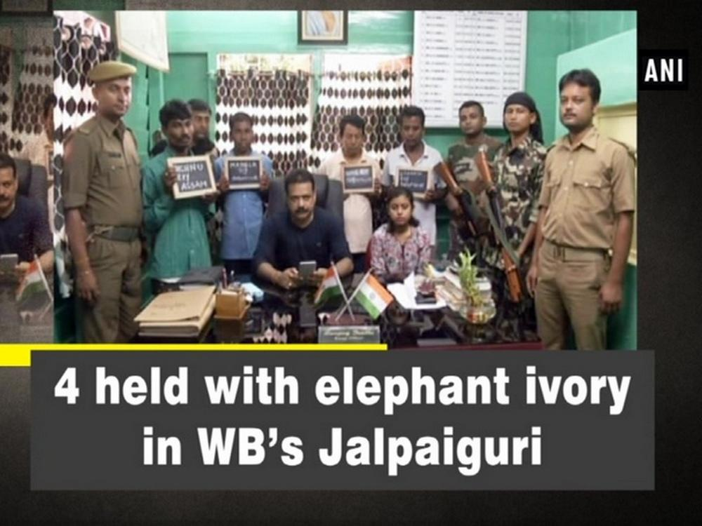Image result for 4 held with elephant ivory in WB Jalpaiguri district