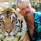 New owners of Tiger King zoo ordered to surrender cubs