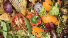 Better composting system sought for Halifax region