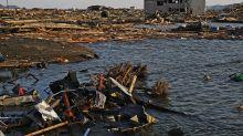 Las especies invasoras que surfean la basura provocada por Fukushima