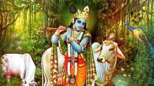 Lord Shri Krishna and the Jubilant Festival of Janmashtami: What will be your mantra this year?