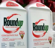Roundup weed killer 'substantial factor' in causing man's cancer, jury finds