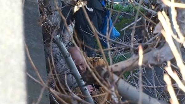 San Jose crew rescues man stuck in tree