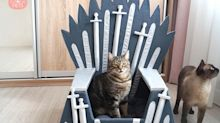 'Game of Thrones' Fans, You Need This Bed for Your Pet