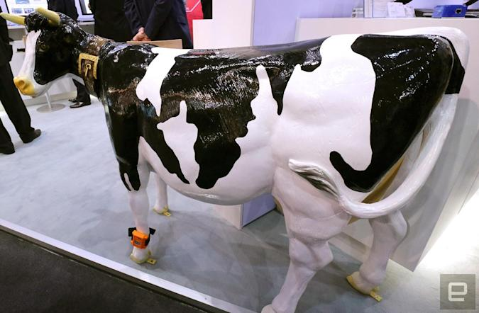 Fujitsu made a wearable that knows when a cow is in the mood