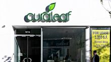 What Curaleaf's record $950 million deal says about U.S. cannabis consolidation