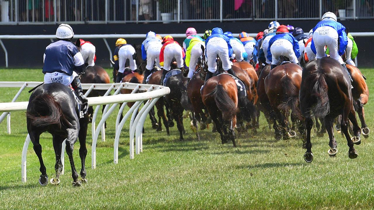 Investigation into Melbourne Cup tragedy releases findings