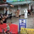 China's latest virus outbreak exposes perils of exotic wildlife trade