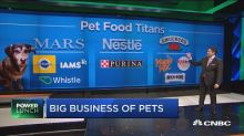 Why General Mills bet on pets