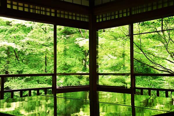 八瀬瑠璃光院 (圖/Photo-AC,以下同)