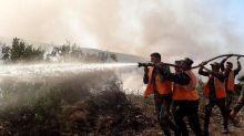 Les feux de forêt «totalement maîtrisés» en Syrie et au Liban