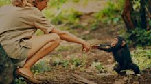 Jane Goodall on whether chimpanzees should get passports, why elephants shouldn't be in zoos, and how Bigfoot might be real
