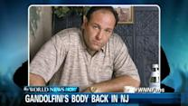 James Gandolfini's Body Back in US
