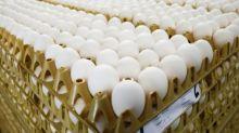 BASF to restrict use of egg scandal pesticide