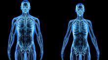 Do que realmente é feito o corpo humano?