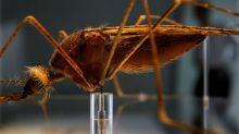 Michigan fights outbreak of deadly disease that isn't coronavirus