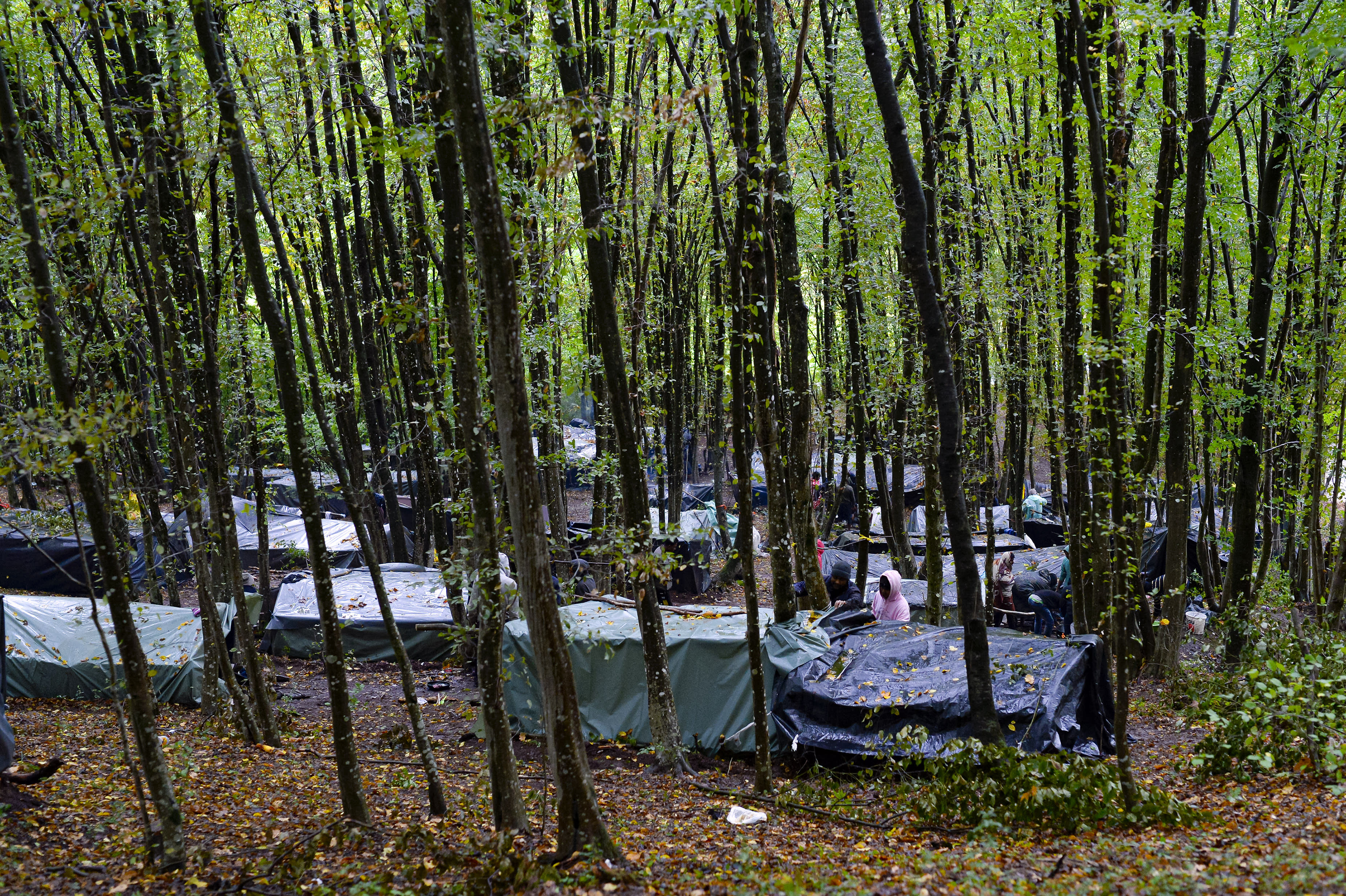 Migrants stand around improvised tents in a makeshift camp in the woods outside Velika Kladusa, Bosnia, Saturday, Sept. 26, 2020.(AP Photo/Kemal Softic)