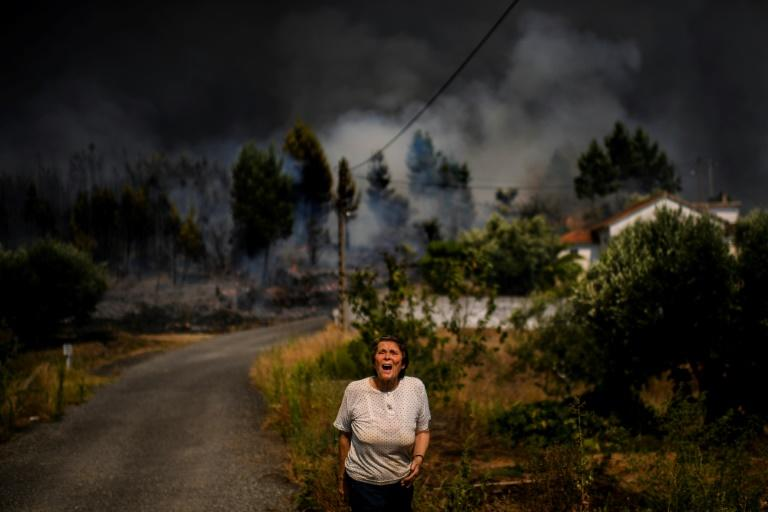 Huge wildfires have ravaged the mountainous Castelo Branco region of central Portugal (AFP Photo/PATRICIA DE MELO MOREIRA)
