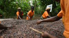 """Ghana y Costa de Marfil suspenden ventas de cacao en una medida """"histórica"""" por un precio justo"""