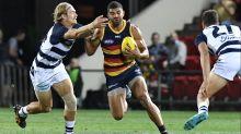 Adelaide's Hampton ends his AFL career