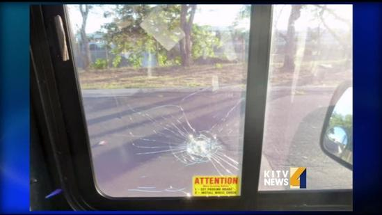 City bus windows shattered, cracked by pellet gun