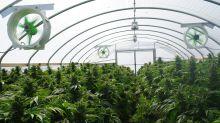 Marijuana REIT Innovative Industrial Posts Triple-Digit Profitability Growth