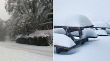 Cold snap hits Australia's southeast – but when will it end?