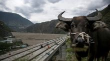 China's hydropower frenzy drowns sacred mountains