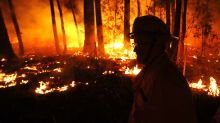 Australian state declares 7-day state of emergency over wildfires