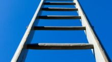 Poem of the week: It Was As If a Ladder by Jane Hirshfield
