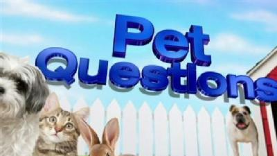 April 28: Pet Questions Answered