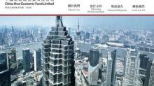 【80】中國新經濟投資料中期由盈轉虧