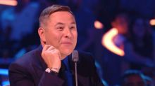 Britain's Got Talent judge David Walliams is getting his own theme park