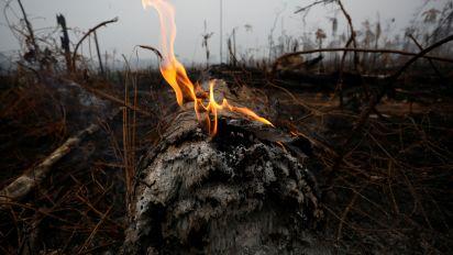 Moro autoriza Força Nacional contra queimadas
