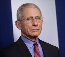 Fauci has questioned whether Russia's coronavirus vaccine is safe amid concerns nations are cutting corners to win the vaccine race