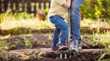 As gardening sales soar, where to buy compost online