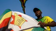 Zimbabwe's plan to outlaw 'unpatriotic acts'