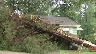 Tree Lands On House