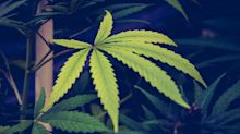 Cormark Securities Cuts Canopy Growth's Price Target