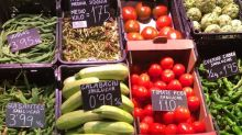 Brassica, lettuce and tear peas… inspiration from Sanlúcar