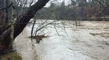 Heavy Rains, Snowmelt Triggers Flooding in Johnstown