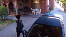 Little Dog Barks Bravely at Bumbling Heidelberg Heights Car Thief